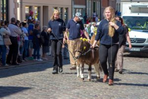 Lucky und Zaravas - Landesrapsblütenfest 2016