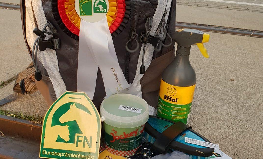 FN-Bundeshengstschau mit Irish Coffee in der Berlin auf der Grünen Woche